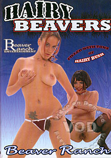 Hairy Beavers Box Cover