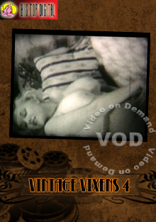 Vintage Vixens 4 Box Cover