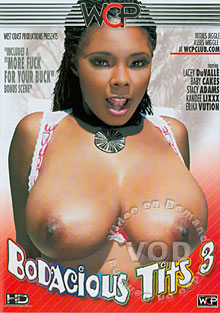 Bodacious Tits 3 Box Cover