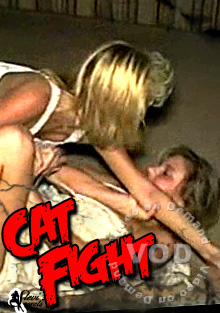 Cat Fight Box Cover