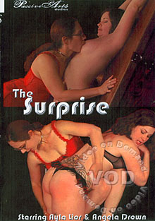 The Surprise Box Cover