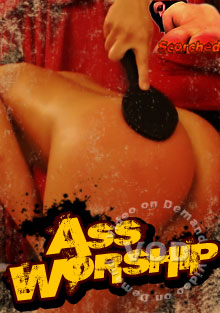 Ass Worship Box Cover