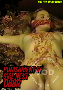 Punishment Of Girl Next Door Box Cover