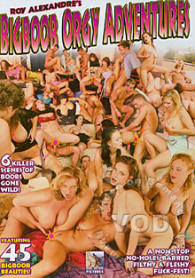Big Boob Orgy Adventures Box Cover