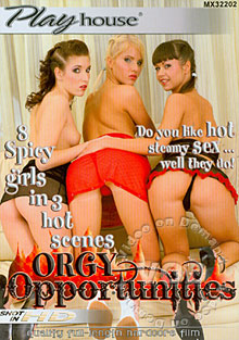 Orgy Opportunities Box Cover