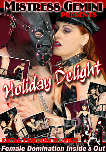 Holiday Delight Box Cover