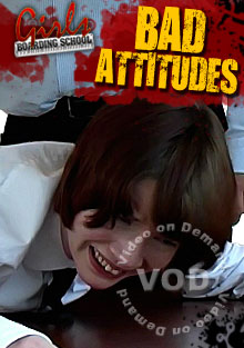 Bad Attitudes Box Cover