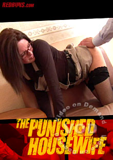 The Punished Housewife Box Cover
