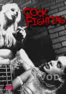 Cock Fighting Box Cover