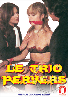 Perverse Threesome - Soft/Erotic Version Box Cover