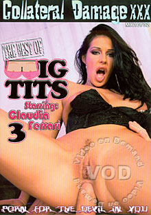 The Best Of Big Tits 3 Box Cover