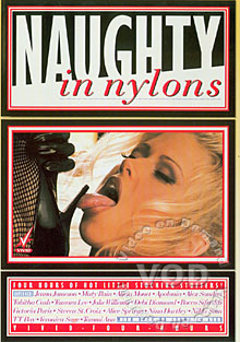 Naughty In Nylons Box Cover