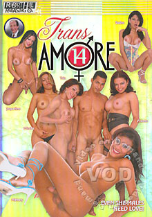 Trans Amore 14 Box Cover