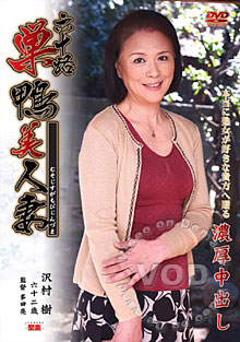 Aunt Of Sex Lover In Edo Box Cover