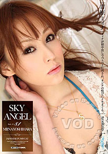 Sky Angel 81 Box Cover