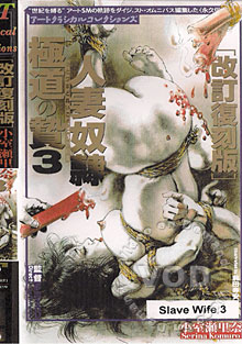 Slave Wife 3 Box Cover