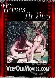 Wives at Play Box Cover