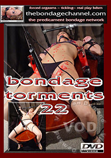 Bondage Torments 22 Box Cover