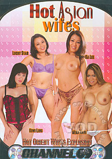 Hot Asian Wifes Box Cover
