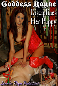 Goddess Rayne Disciplines Her Puppy Box Cover