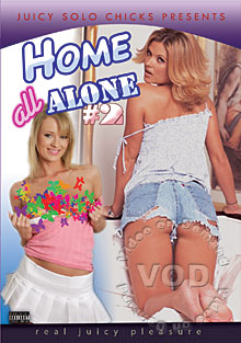 Home All Alone #2 Box Cover