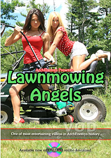 Lawn Mowing Angels Box Cover