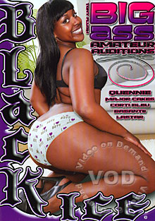 Big Ass Amateur Auditions Box Cover