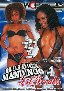 Big Dick Mandingo - Lil Freaks 4 Box Cover
