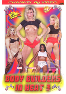 Body Builders In Heat 3 Box Cover