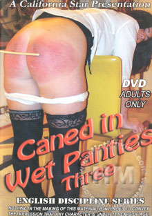Caned In Wet Panties Three Box Cover