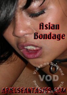 Asian Bondage Box Cover