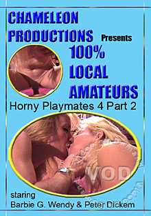 Horny Playmates 4 Part 2 Box Cover
