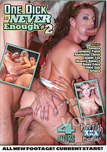 One Dick Is Never Enough #2 Box Cover