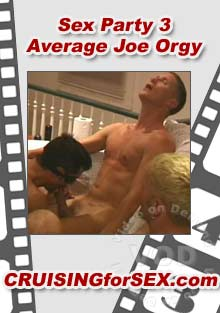 Sex Party 3 - Average Joe Orgy Box Cover