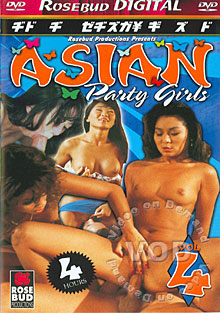 Asian Party Girls Vol 4 Box Cover