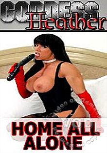 Home All Alone Box Cover