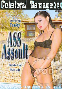 Ass Assault Box Cover