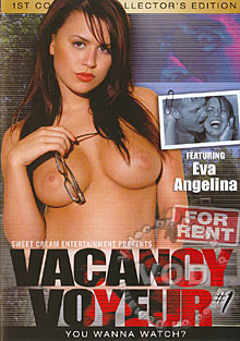 Vacancy Voyeur Box Cover