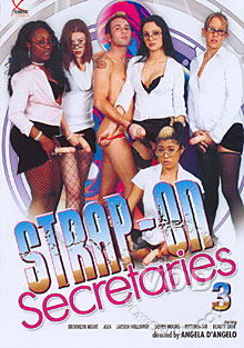 Strap-On Secretaries 3 Box Cover