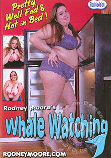 Whale Watching Box Cover