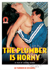 Video: The Plumber Is Horny - Soft/Erotic Version