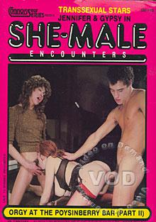 She Male Encounters - Orgy At Poysinberry Bar Part II Box Cover