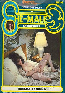 She Male Encounters - Dreams Of Sulka Box Cover