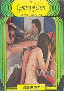 Orgasm Orgy Box Cover