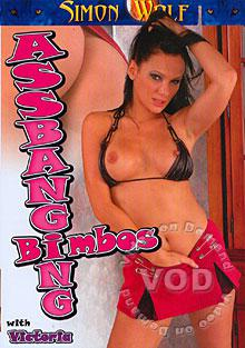 Ass Banging Bimbos Box Cover