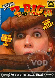 2 Big 2 Be True #13 Box Cover
