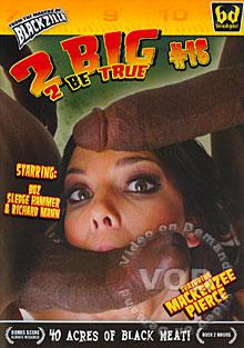 2 Big 2 Be True #16 Box Cover