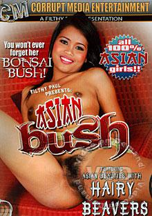 Asian Bush Box Cover