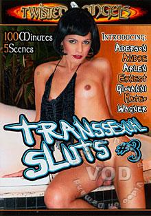Transsexual Sluts #3 Box Cover