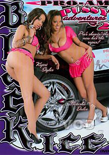 Pro-Am Pussy Adventures 2 Box Cover